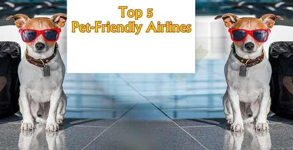 Top 5 Pet-Friendly International Airlines 2018 for Safe Traveling